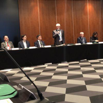 Međunarodna konferencija o zaštiti Jadranskog mora